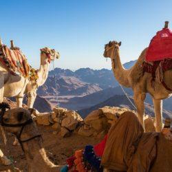 HIking views - Egypt