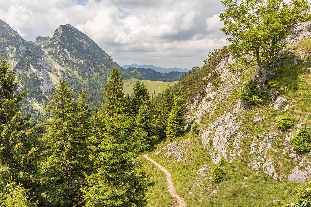 Gemütlich geht es am Berg entlang in Richtung Wendelstein.