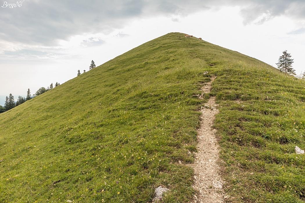 Der kurze aber knackige Aufstieg zum Mitterberg